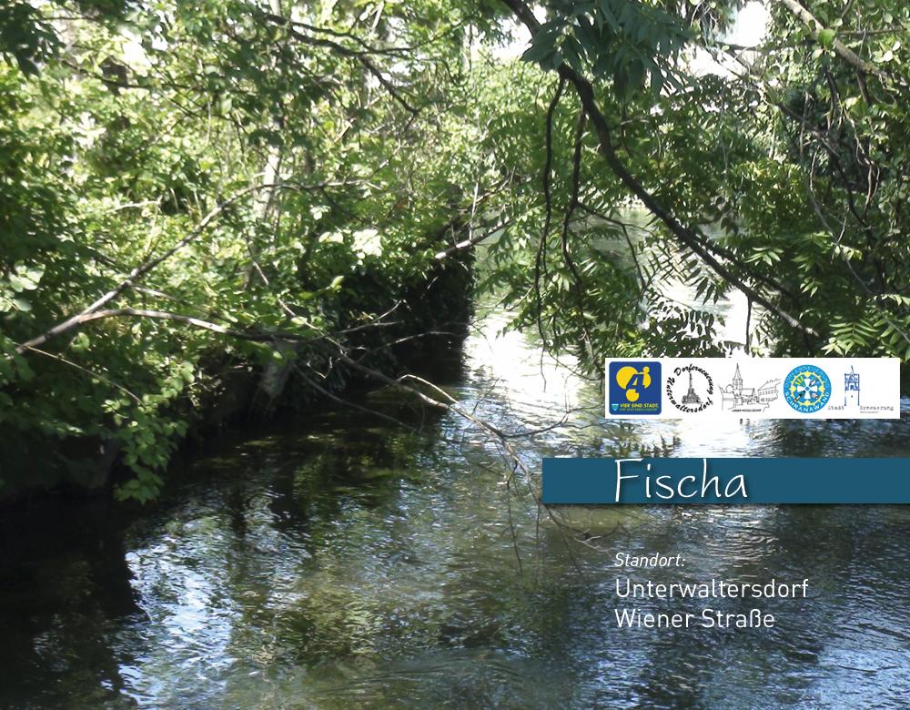 fischa-uw